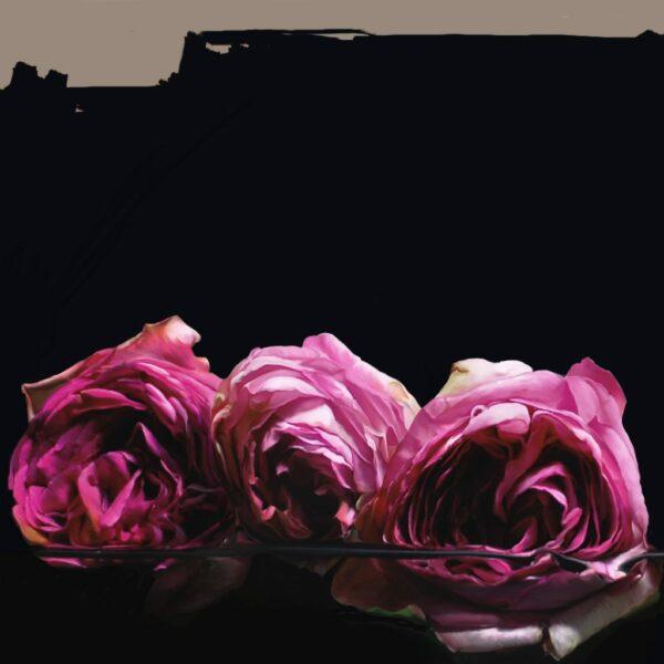Galeriedruck auf Dibond, 100cm x 100 cm