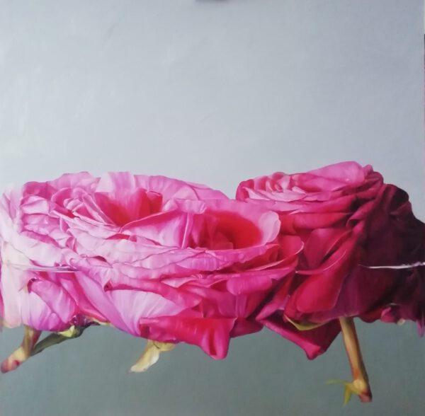 pink dream- III