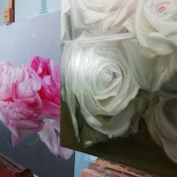 weisse Rosen: Friedenssymbol, langjährige Beziehungen, Leidenschaft und Treue