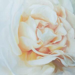 Rosenmalerei, Rosen, Roses, Flowerpaintings, floral painting, rosesart